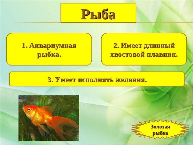 1. Аквариумная рыбка. 2. Имеет длинный хвостовой плавник. 3. Умеет исполнять...