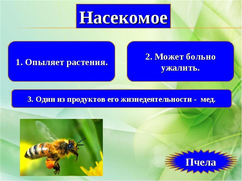 1. Опыляет растения. 2. Может больно ужалить. 3. Один из продуктов его жизнед...