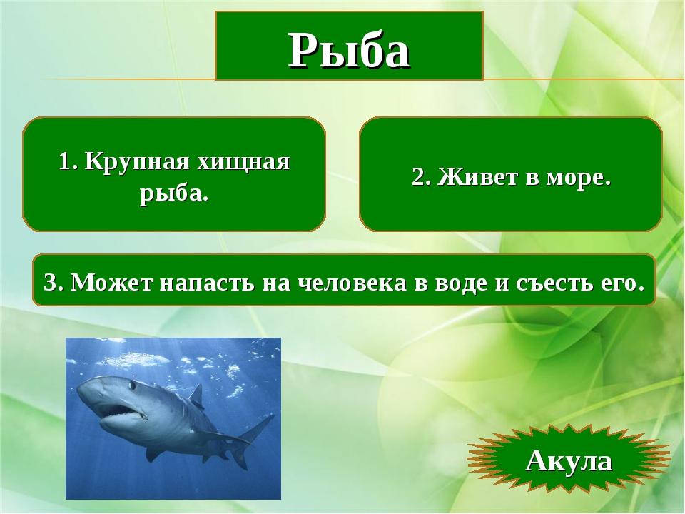 1. Крупная хищная рыба. 2. Живет в море. 3. Может напасть на человека в воде...