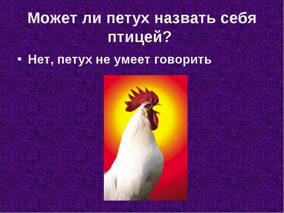 Может ли петух назвать себя птицей? Нет, петух не умеет говорить