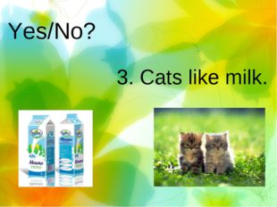 Yes/No? 3. Cats like milk.