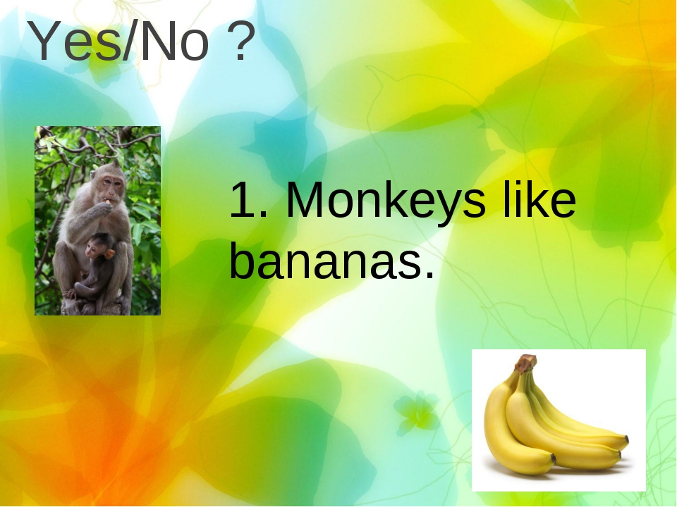 Yes/No ? 1. Monkeys like bananas.