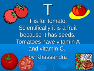 T T is for tomato. Scientifically it is a fruit because it has seeds. Tomatoe