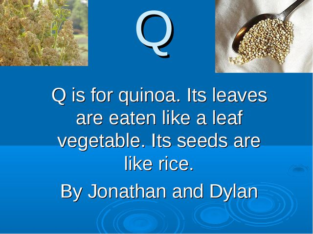Q Q is for quinoa. Its leaves are eaten like a leaf vegetable. Its seeds are...