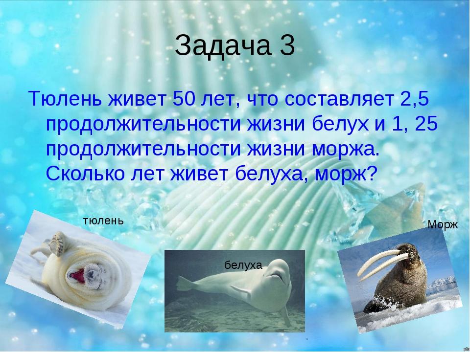 Задача 3 Тюлень живет 50 лет, что составляет 2,5 продолжительности жизни белу...