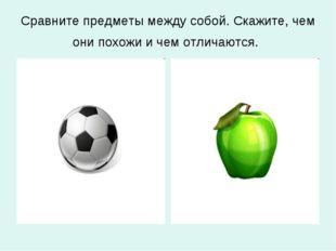 Сравните предметы между собой. Скажите, чем они похожи и чем отличаются.