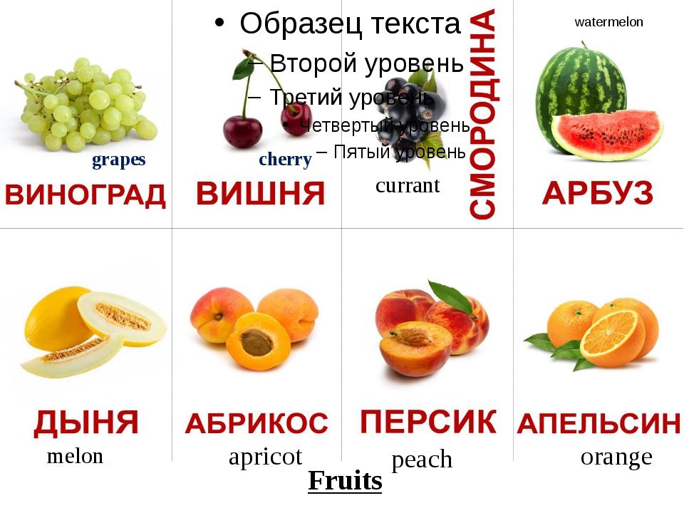 grapes cherry currant watermelon melon apricot peach orange Fruits