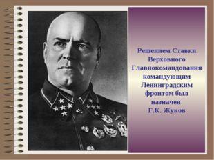 Решением Ставки Верховного Главнокомандования командующим Ленинградским фронт