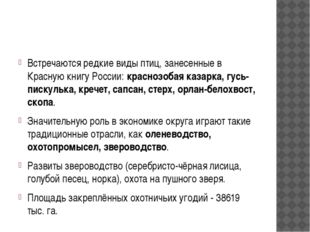 Встречаются редкие виды птиц, занесенные в Красную книгу России: краснозобая