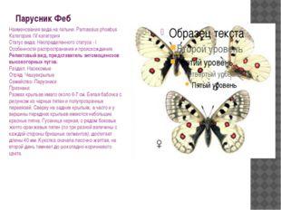 Парусник Феб Наименования вида на латыни: Parnassius phoebus Категория: IV ка