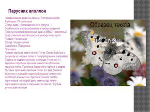 Парусник аполлон Наименования вида на латыни: Parnassius apollo Категория: IV