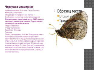 Чернушка мраморная Наименования вида на латыни: Erebia discoidalis Категория: