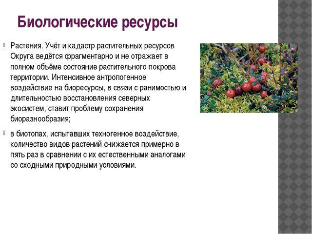 Биологические ресурсы Растения. Учёт и кадастр растительных ресурсов Округа в...