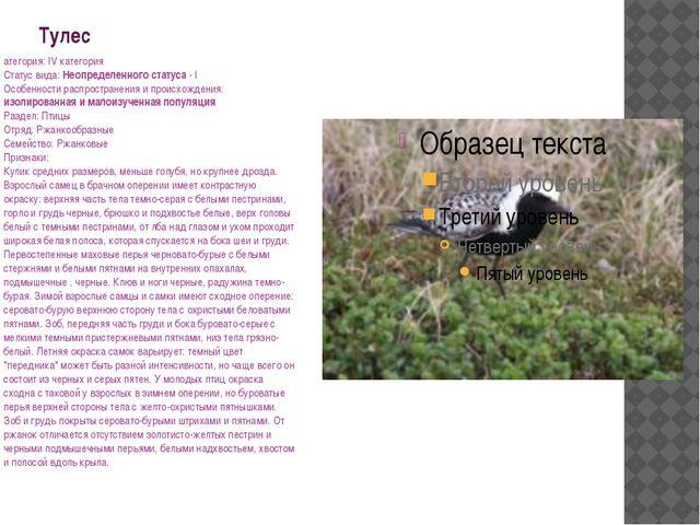 Тулес атегория: IV категория Статус вида: Неопределенного статуса - I Особенн...