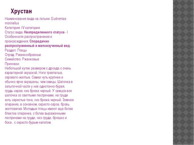 Хрустан Наименования вида на латыни: Eudromias morinellus Категория: IV катег...