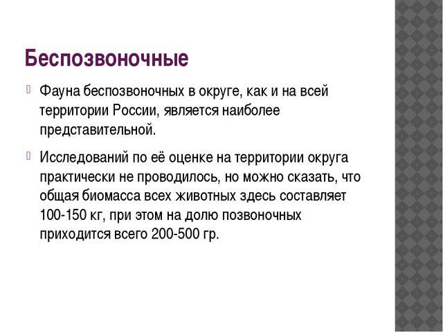 Беспозвоночные Фауна беспозвоночных в округе, как и на всей территории России...