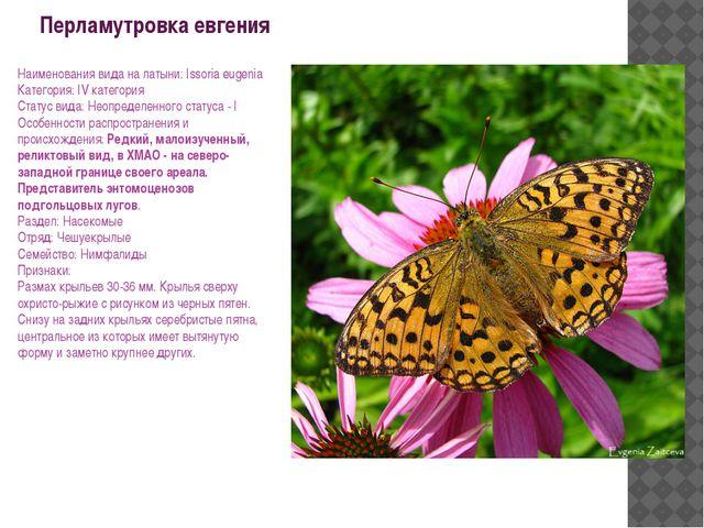 Перламутровка евгения Наименования вида на латыни: Issoria eugenia Категория:...