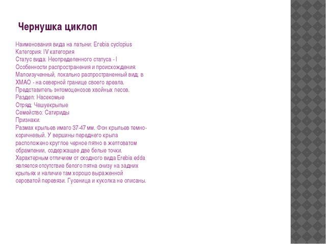Чернушка циклоп Наименования вида на латыни: Егеbiа cyclopius Категория: IV к...
