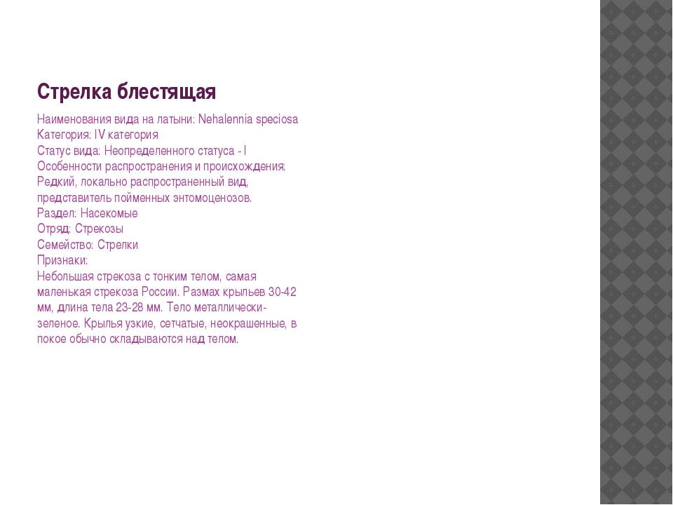 Стрелка блестящая Наименования вида на латыни: Nehalennia speciosa Категория:...