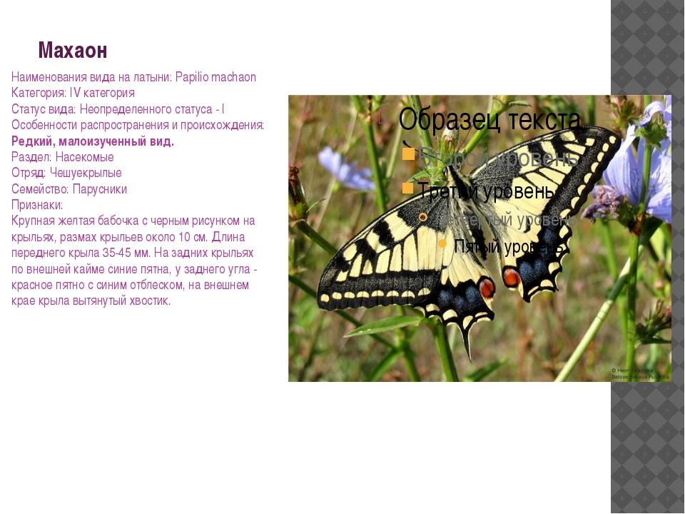 Махаон Наименования вида на латыни: Papilio machaon Категория: IV категория С...