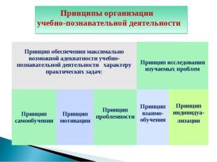 Diagram Принципы организации учебно-познавательной деятельности Принцип обесп