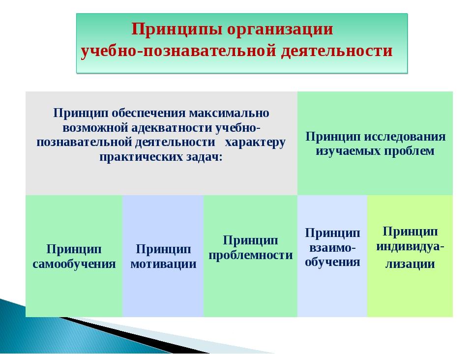Diagram Принципы организации учебно-познавательной деятельности Принцип обесп...