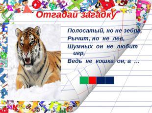 Отгадай загадку Полосатый, но не зебра, Рычит, но не лев, Шумных он не любит