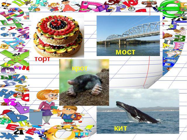 мост крот кит торт