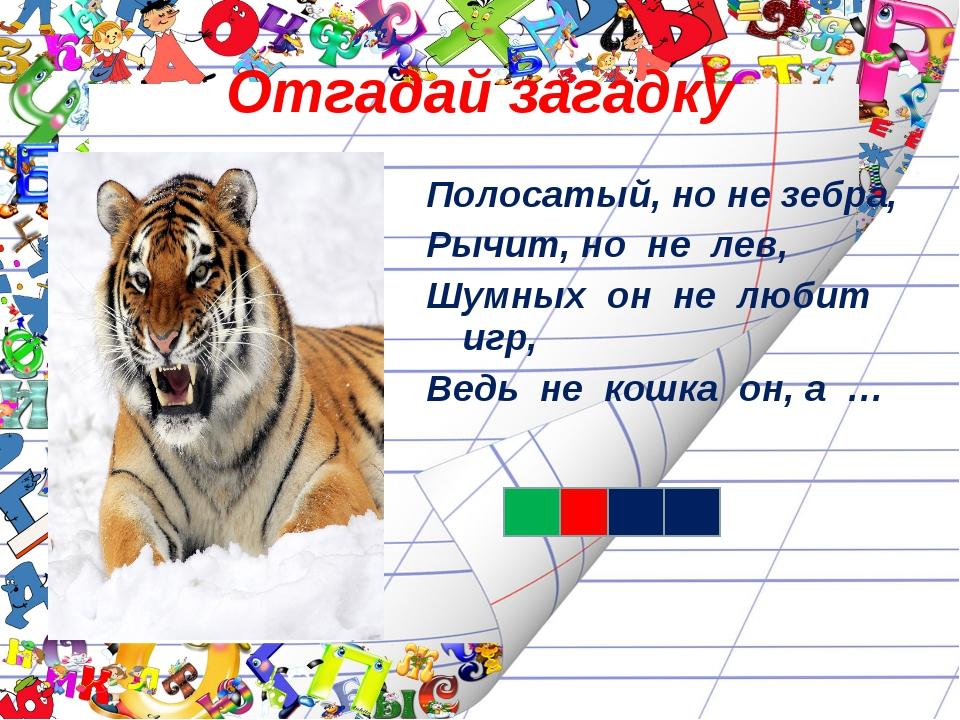 Отгадай загадку Полосатый, но не зебра, Рычит, но не лев, Шумных он не любит...
