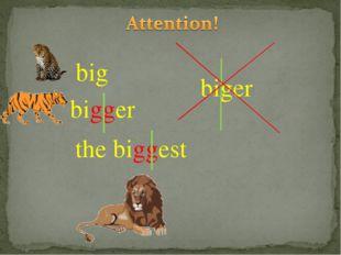 bigger biger the biggest big