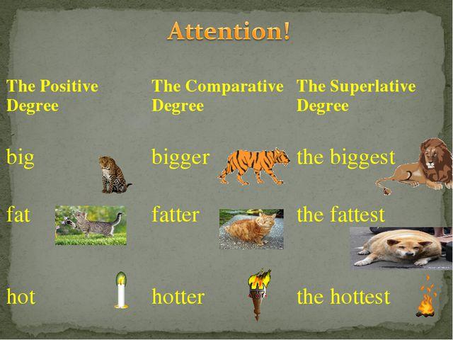 The Positive DegreeThe Comparative DegreeThe Superlative Degree bigbigger...