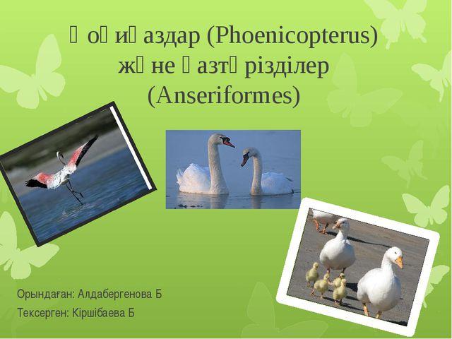 Қоқиқаздар (Phoenicopterus) және қазтәрізділер (Anseriformes) Орындаған: Алда...