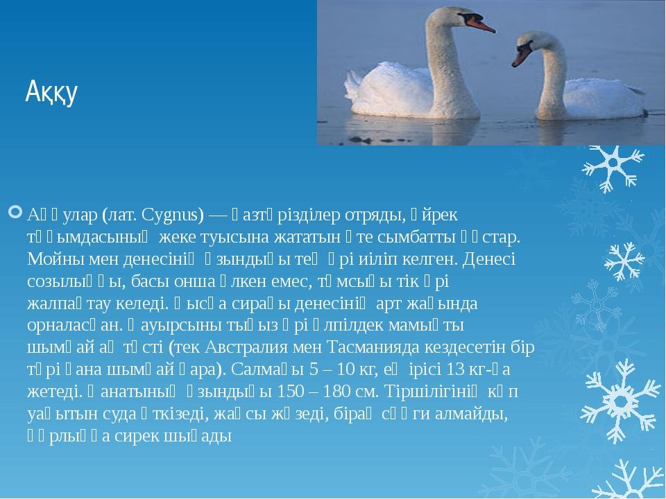 Аққу Аққулар (лат. Cygnus) — қазтәрізділер отряды, үйрек тұқымдасының жеке ту...