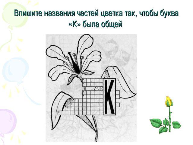 Впишите названия частей цветка так, чтобы буква «К» была общей