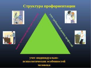 Структура профориентации учет индивидуально-психологических особенностей чело