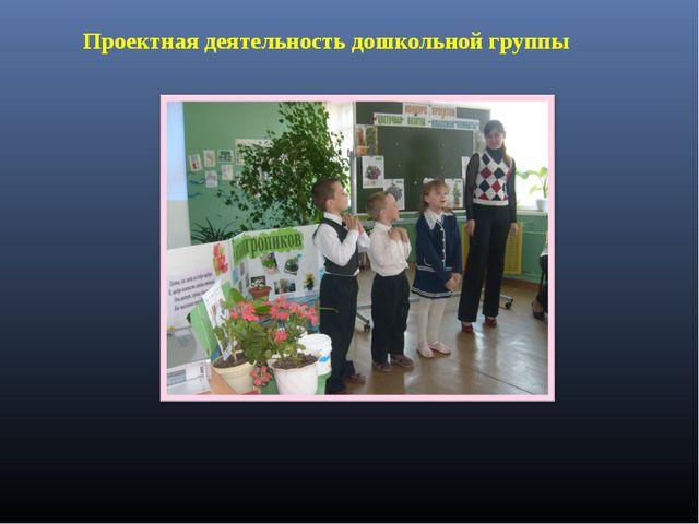 Проектная деятельность дошкольной группы