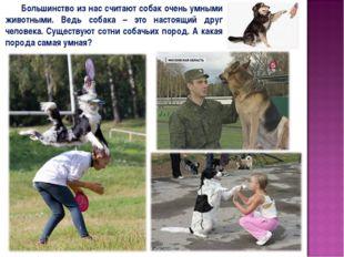 Большинство из нас считают собак очень умными животными. Ведь собака – это н
