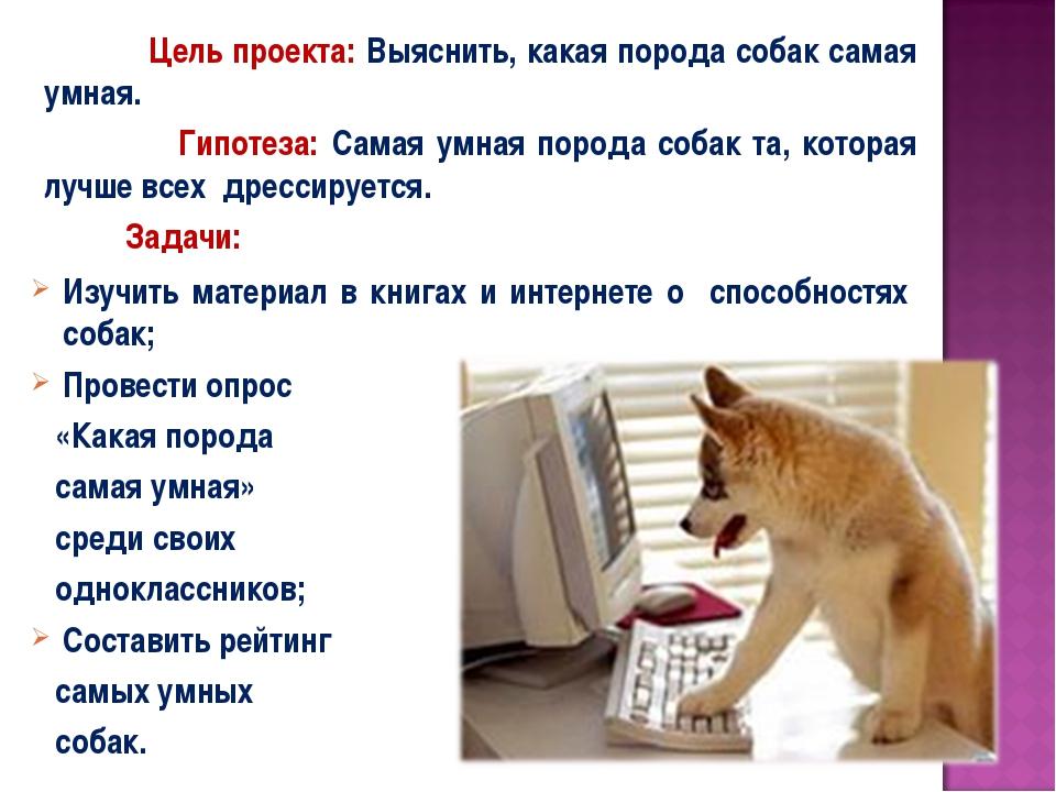 Цель проекта: Выяснить, какая порода собак самая умная. Гипотеза: Самая умна...