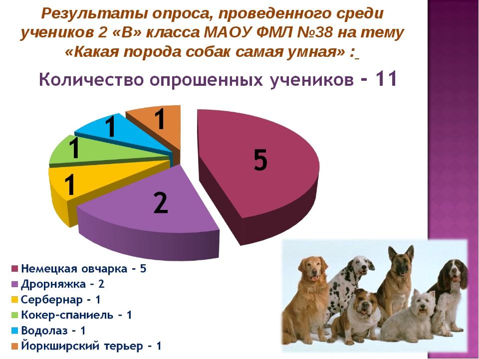 Результаты опроса, проведенного среди учеников 2 «В» класса МАОУ ФМЛ №38 на т...