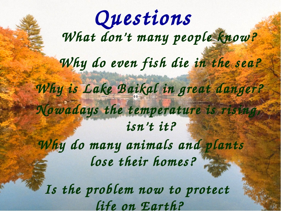 Questions What don't many people know? Why do many animals and plants lose th...