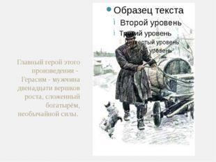 Главный герой этого произведения -  Герасим - мужчина двенадцати вершков рост