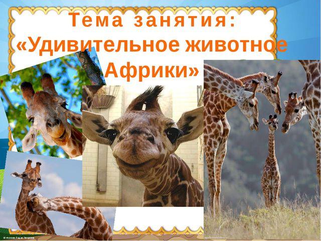 Тема занятия: «Удивительное животное Африки»