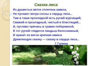 Сказка леса Из душистых веток сплетена завеса, Не пускают ветра сосны к серд