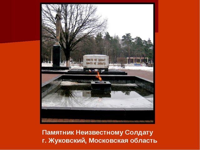Памятник Неизвестному Солдату г. Жуковский, Московская область