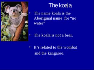 "The koala The name koala is the Aboriginal name for ""no water"" The koala is n"