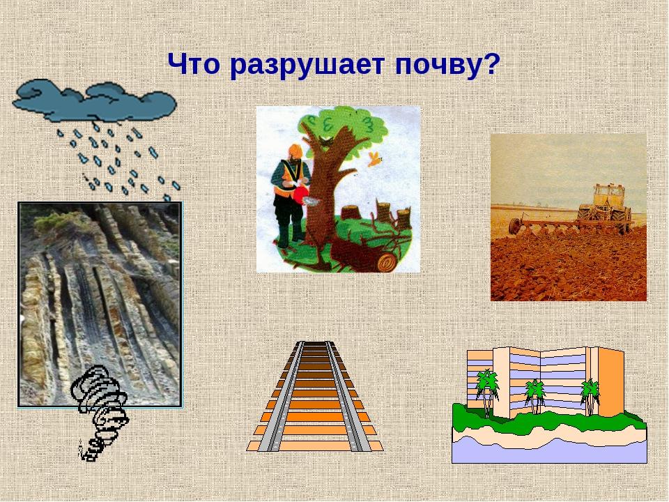 Что разрушает почву?