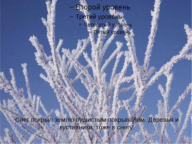 Снег покрыл землю пушистым покрывалом. Деревья и кустарники тоже в снегу.