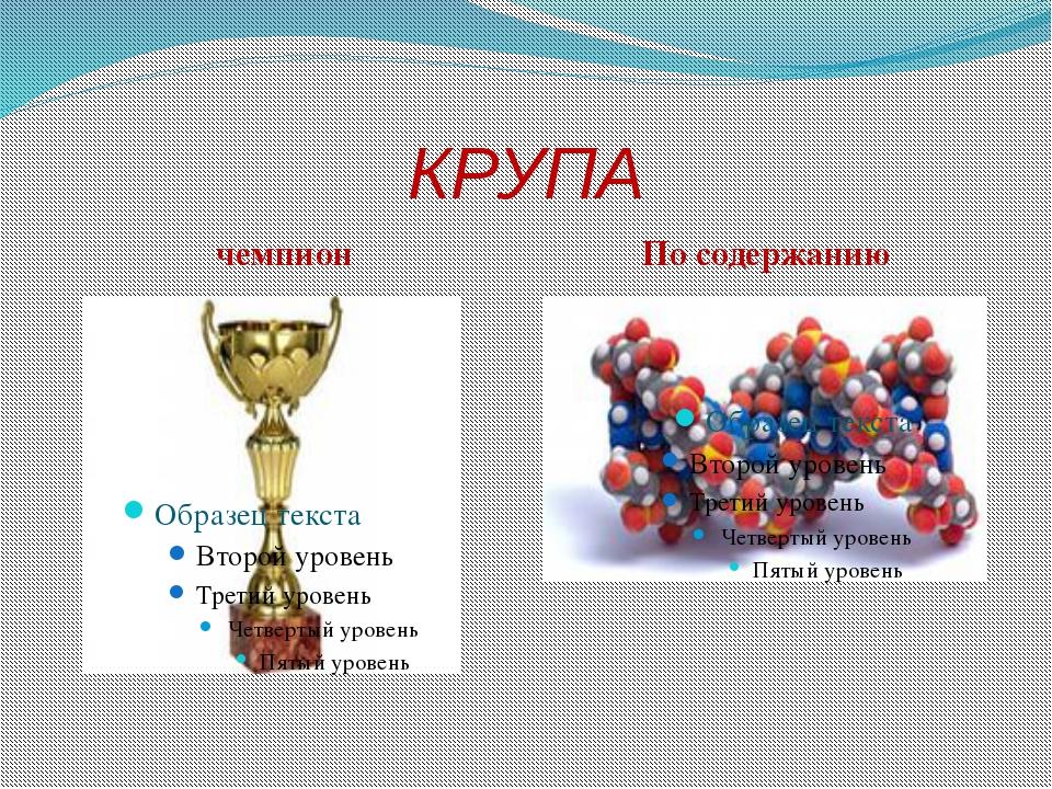 КРУПА чемпион По содержанию
