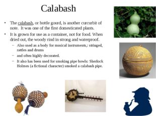 Calabash The calabash, or bottle gourd, is another curcurbit of note. It was