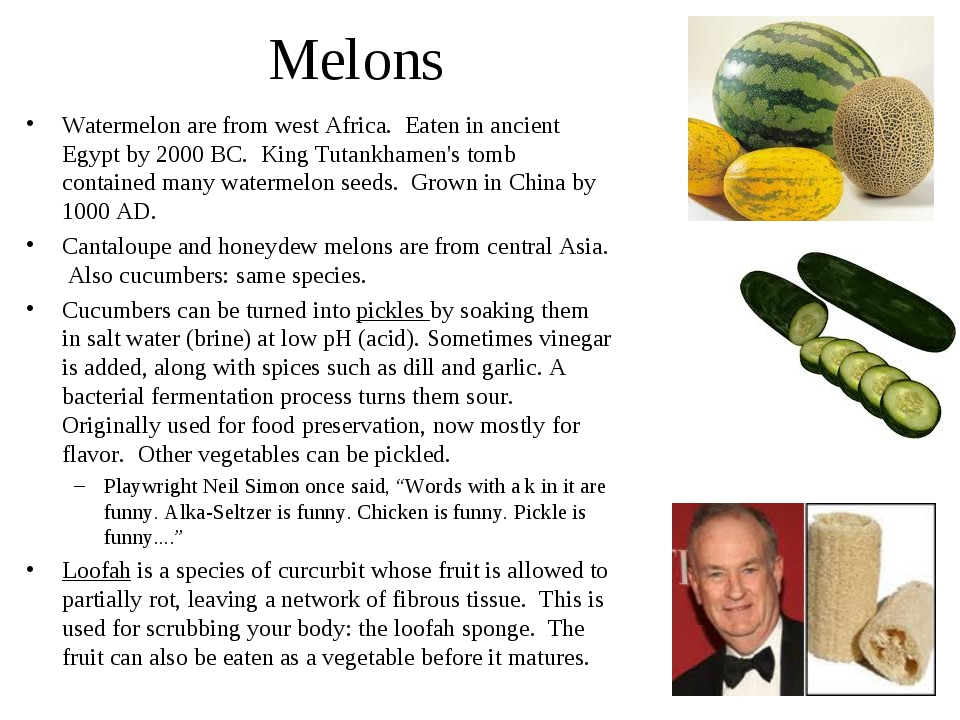 Melons Watermelon are from west Africa. Eaten in ancient Egypt by 2000 BC. Ki...
